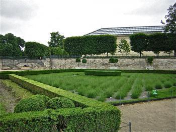 orangerie-Vue-des-jardins.jpg
