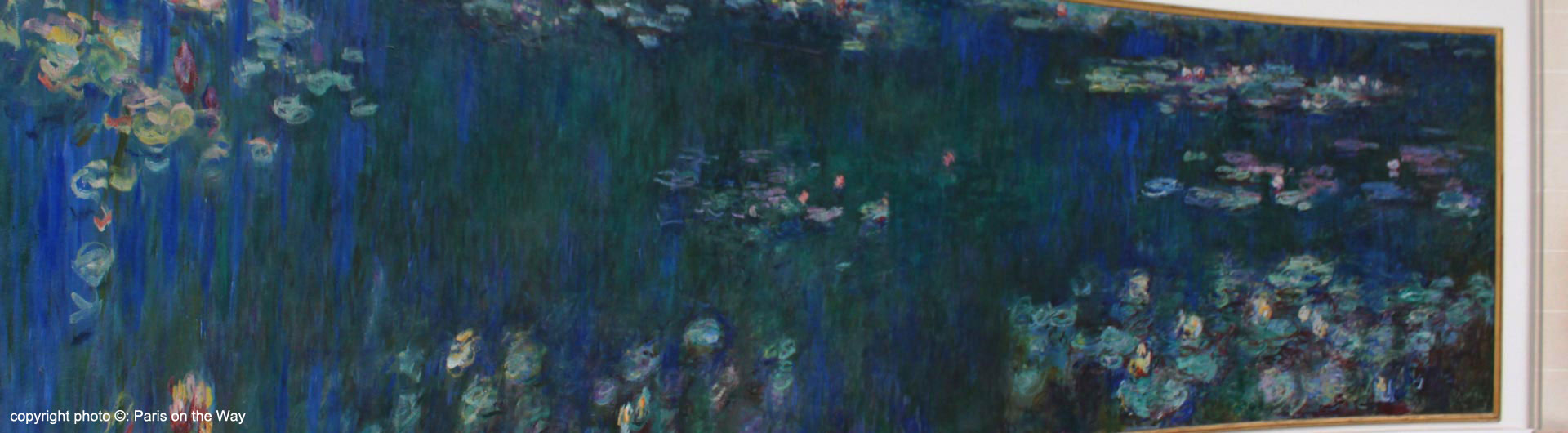 MONET & THE WATERLILIES